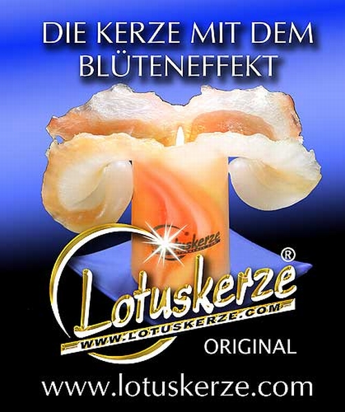 Original Lotuskerzen